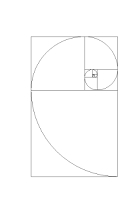 Fibonacci Squares and Logarithmic Spiral